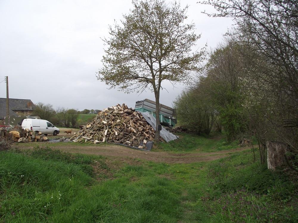 Le bois est vendu sur le bord du chemin
